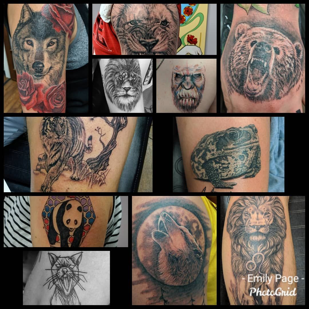 Lions And Tigers And Bears And A Bunch Of Other Creatures Love Doing Animal Tattoos Animaltattoo Animaltattoos T Animal Tattoos Nc Tattoo Animal Tattoo