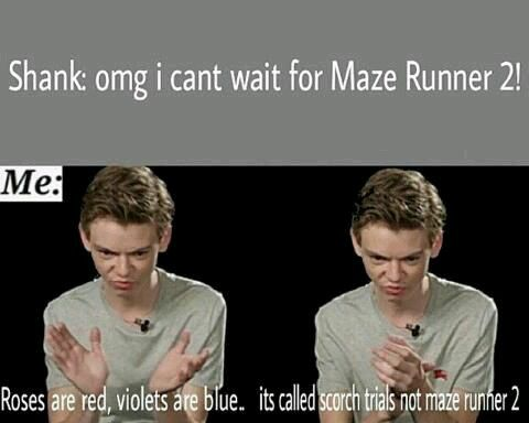 Shank: omg, i can't wait for Maze Runner 2 Me: Roses are red, violets are blue… its called Scorch Trial not Maze Runner 2