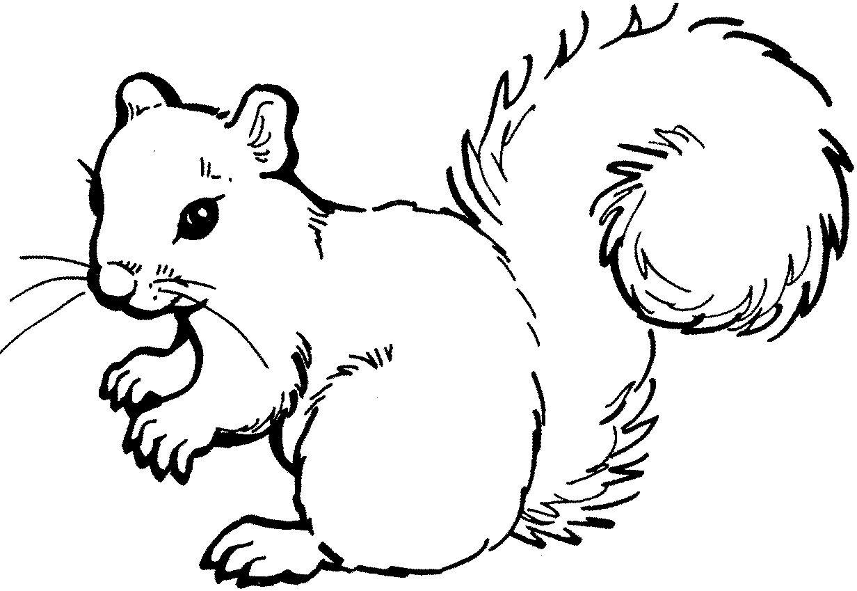 Рисунки детей животных картинки