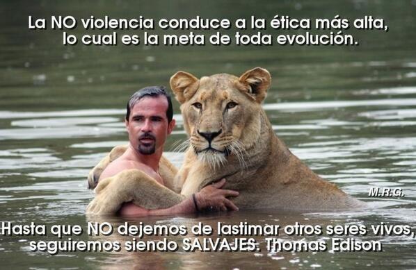 La no violencia...