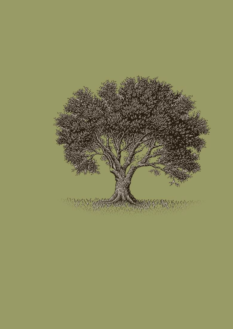 Olive tree..would love to have this as a small tattoo. It reminds me ...