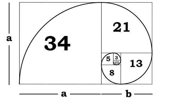 what is the golden ratio fun facts goldener schnitt geometrie heilige geometrie. Black Bedroom Furniture Sets. Home Design Ideas