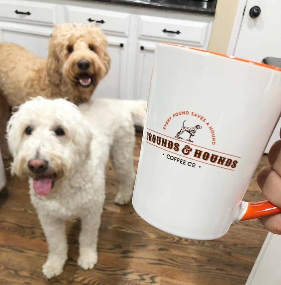 """""""My"""" Mug Coffee hound, Coffee enthusiast, Coffee cups"""