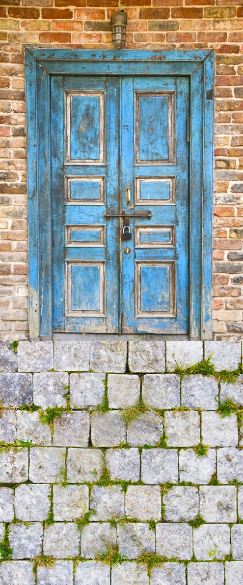 Package Deal   Blue Door with Brick Wall by LollipopBackdrops, $175.00
