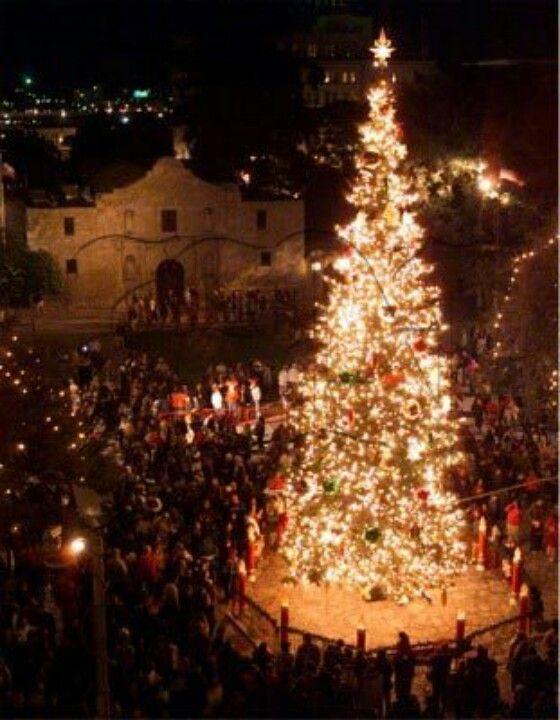 Tree Lighting at the Alamo All Things TEXAS Pinterest Tree