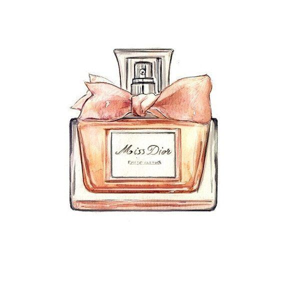 Miss Dior Perfume Bottle Watercolor Illustration Art Print 10 00 Via Etsy Perfume Art Perfume Bottle Art Perfume Bottles