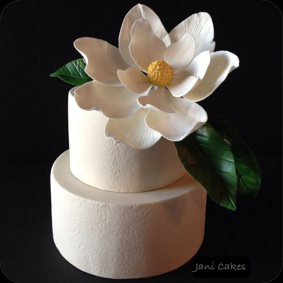 Gumpaste Flowers For Wedding Cakes: Magnolia Flower Wedding Cake. Fondant Covered Chocolate