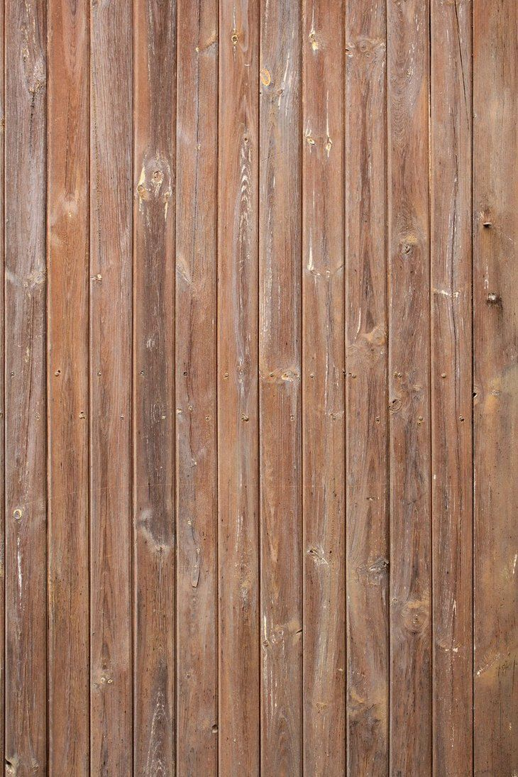 Wood texture wooden plank - Wood Texture 19 By