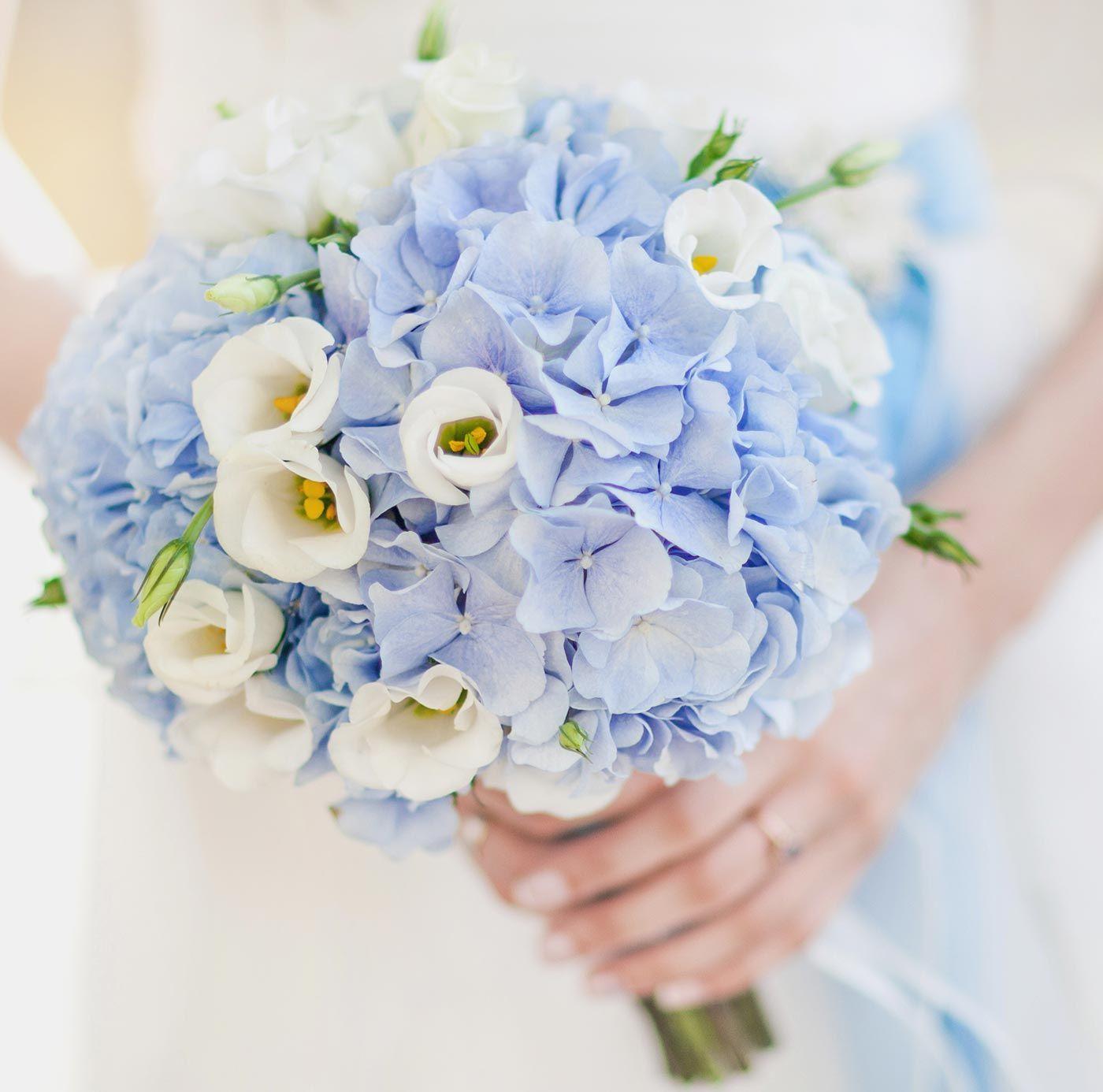 Brautstrau Hortensie Blau  Hochzeitsblumen in 2019