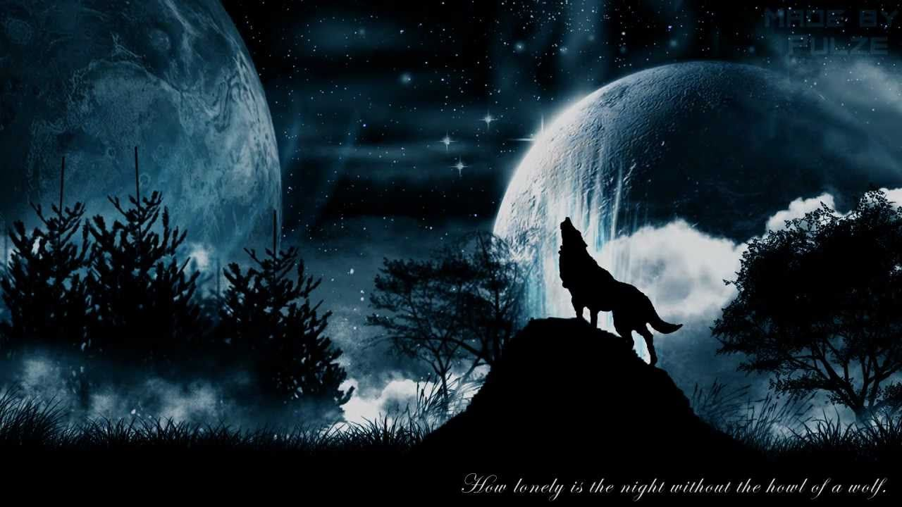 wolf moon wallpaper hd wallpapers pinterest wolf