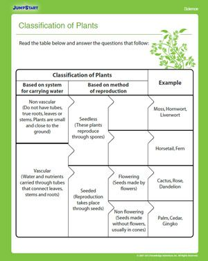 Classification of Plants | nats worksheets | 4th grade