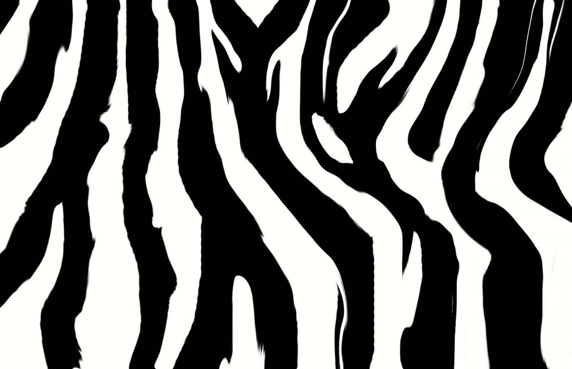 http://www.3d-hdwallpaper.com//bulk_images/hd-zebra-pink-wallpaper ...
