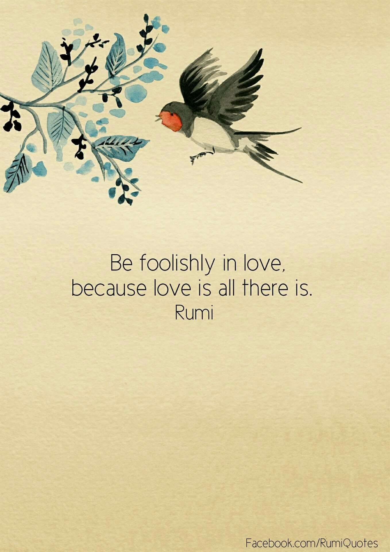 "Rumi Quote Be Foolishly In Love Because Love Is All There Is""  Rumi …  Words…"