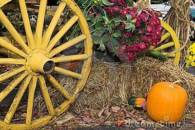 Fall Harvest - Download From Over 34 Million High Quality Stock Photos, Images, Vectors. Sign up for FREE today. Image: 1413681