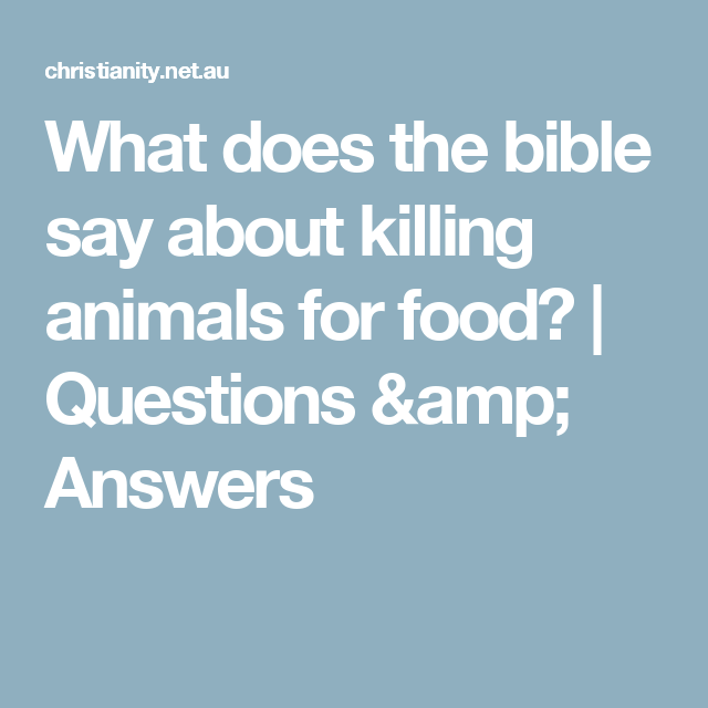what does the bible say about killing animals for food questions answers