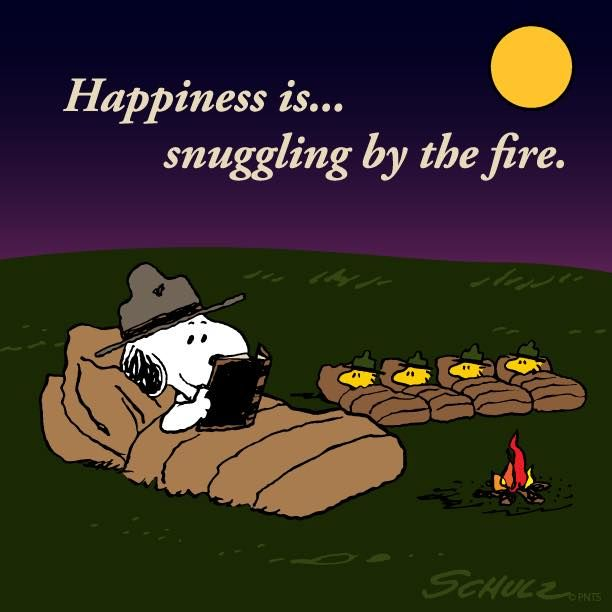 d341b821848269 Snoopy   Woodstock Happiness is snuggling by the fire.