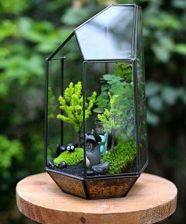 1412863361 302 selbermachen pflanzen und garten terrarium garten und mini gew chshaus. Black Bedroom Furniture Sets. Home Design Ideas