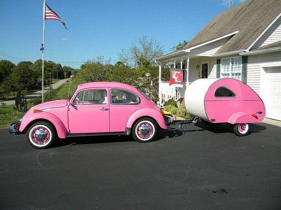 Old pink bug