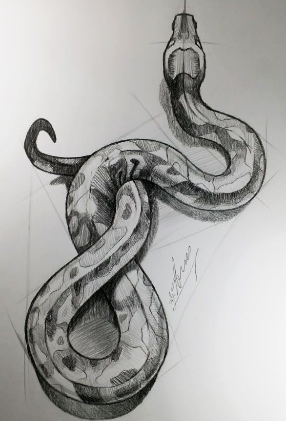 How to draw a Snake. Python easy art drawing tutorial