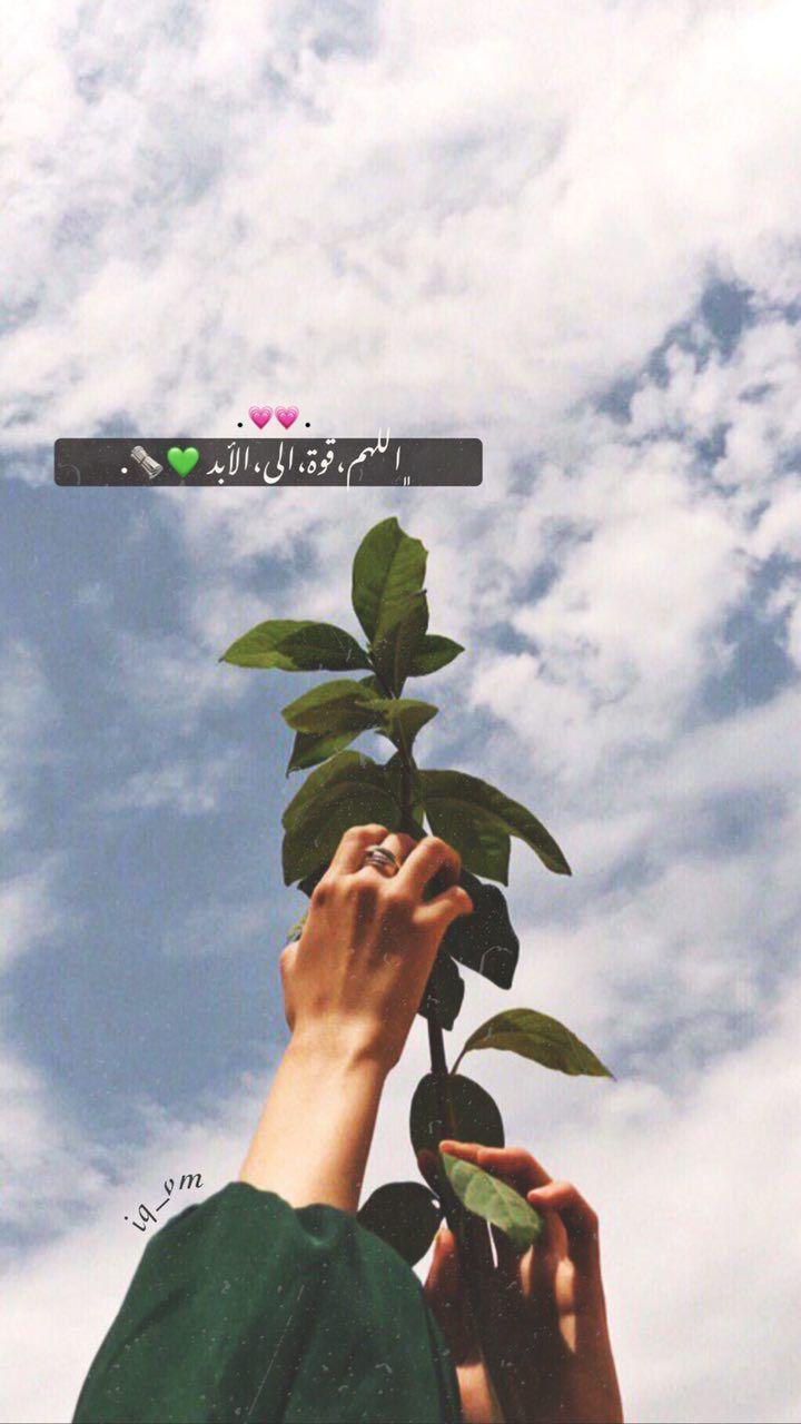 قناتي على تيلجرام Iq Vx Beautiful Arabic Words Iphone Wallpaper Quotes Love Photo Quotes