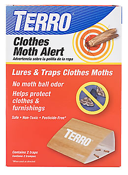 Moths How to Control a ClothesMoth Infestation Moth