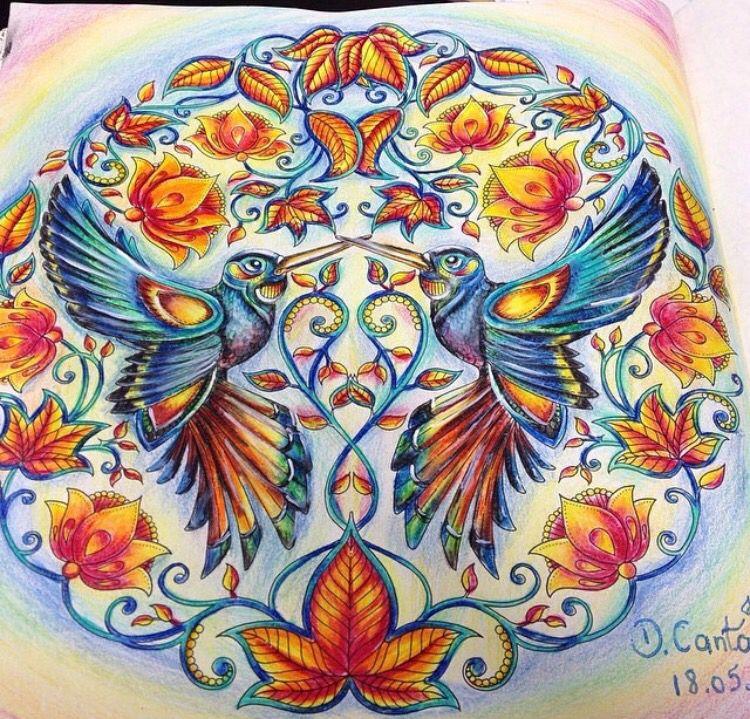 Humming Birds Secret Garden Beija Flores Jardim Secreto Johanna Basford Kolibri Inspiration