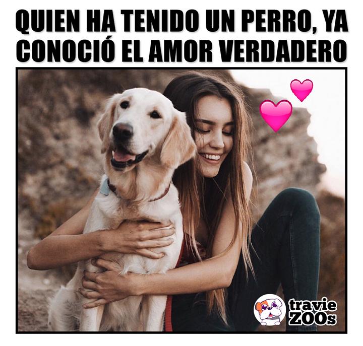 Es El Verdadero Amor Incondicional Amor Zoo El Amor