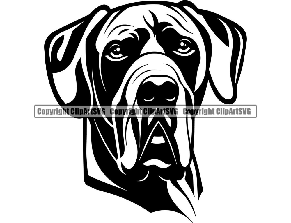 Great Dane Dog Breed Head Happy Face Smile Paw Puppy Pup Pet Etsy In 2021 Great Dane Dane Dane Dog