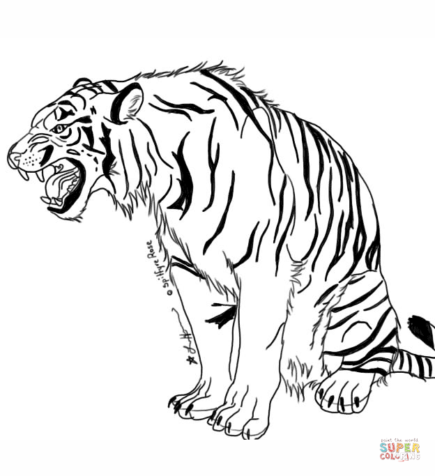 Snarling Tiger By Spitfyrerose Coloring Page Png 624 683 Lowen Malvorlagen Malvorlagen Tiere Malvorlagen