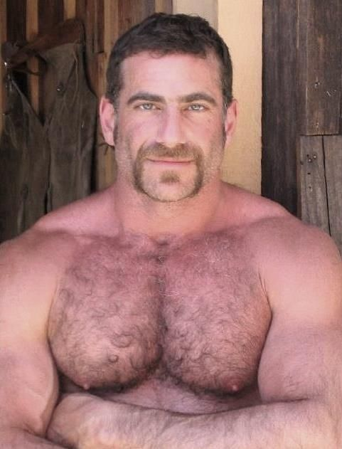 Hairy chested gay bear men