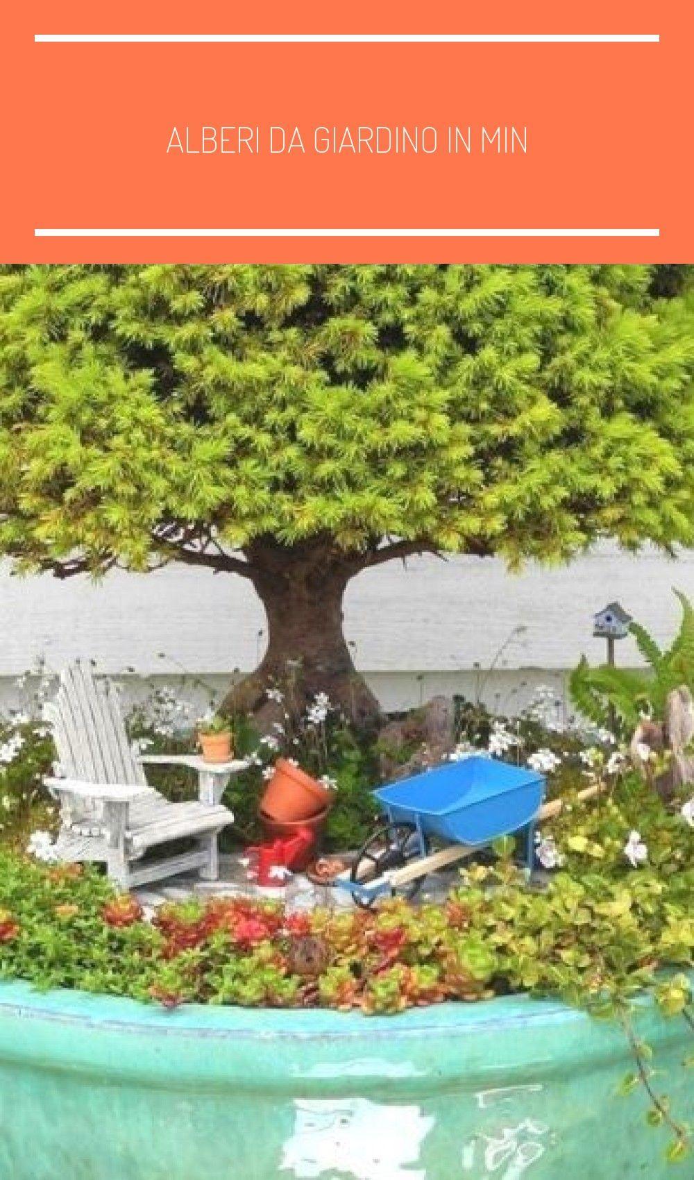 Alberi Da Giardino In Min In 2020 Miniature Garden Garden Trees