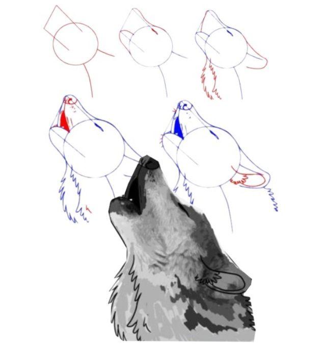 How To Draw A Howling Wolf Desenhos De Caes Esbocos De Animais