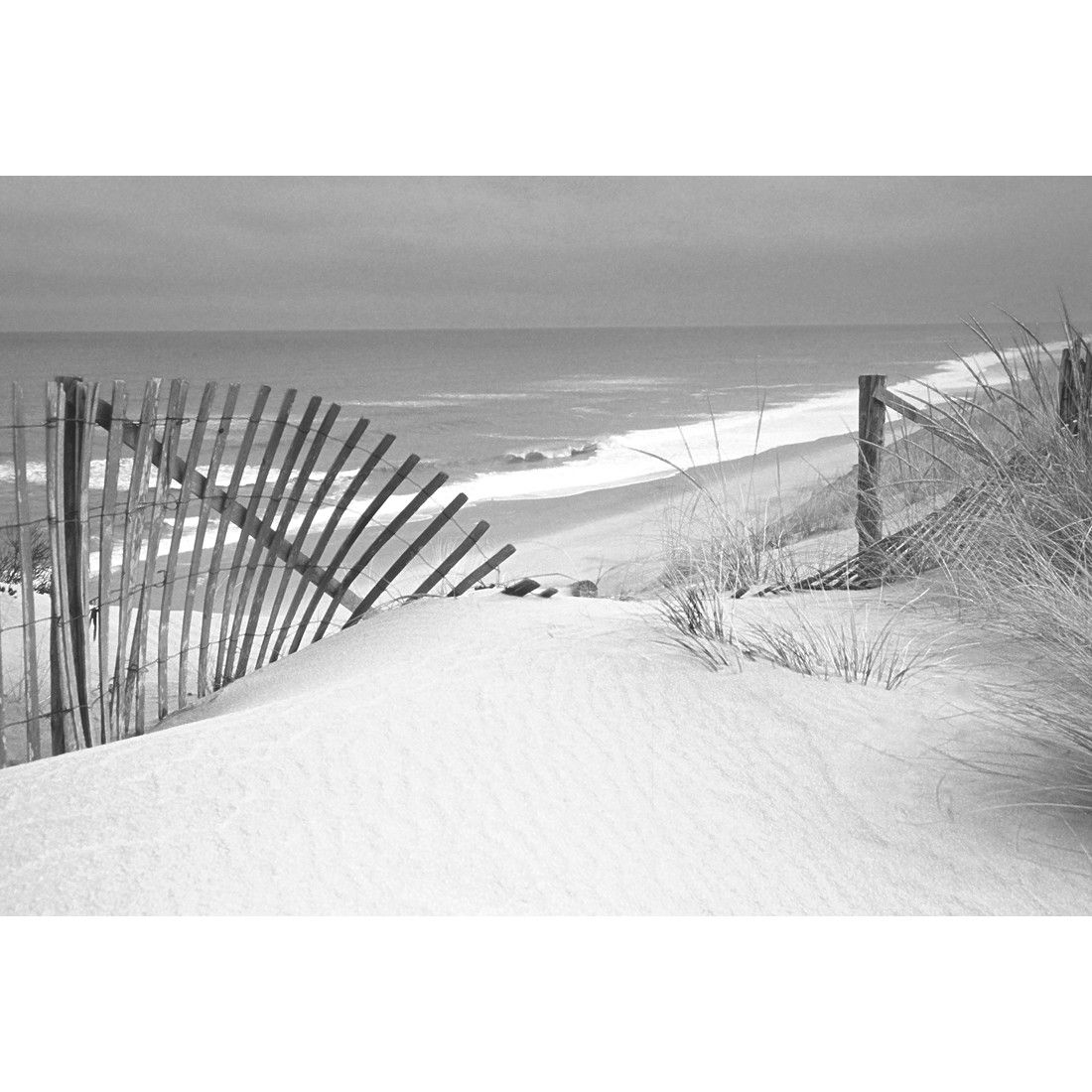 Black white beach fence canvas temple webster