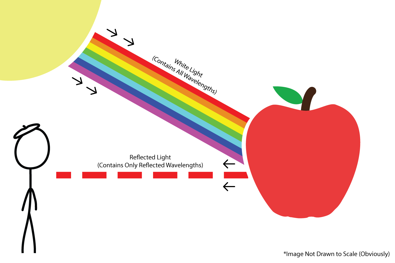 Color Reflection Diagram