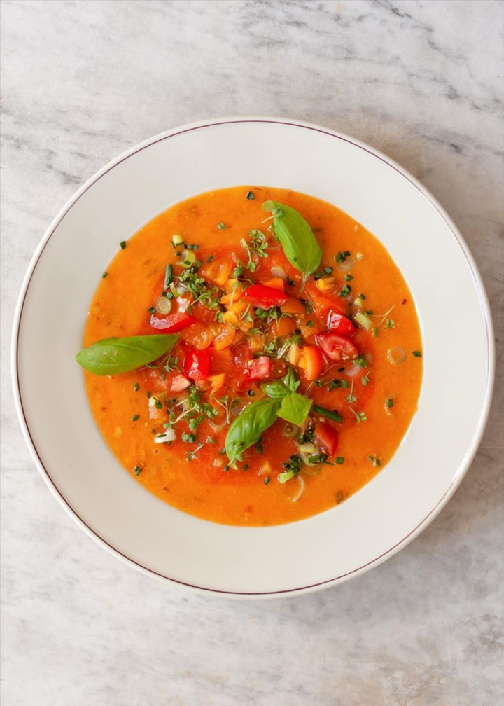 la pappa al pomodoro florentiner tomatensuppe tomaten