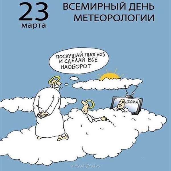 имеет прикольное поздравление метеорологу овечей шерсти