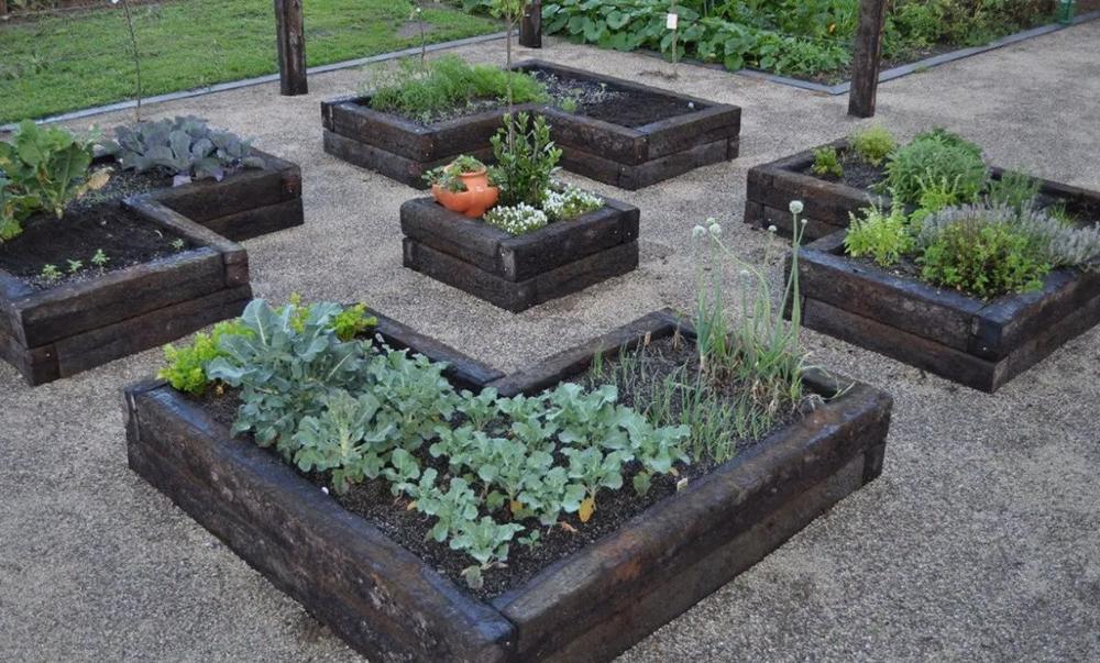 15 Gorgeous Small Vegetable Garden Ideas To Increase Your ...