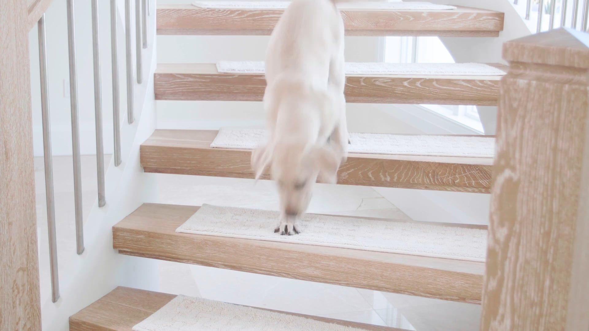 Best 379077 Harrison Weave Washable Stair Treads Carpet 640 x 480