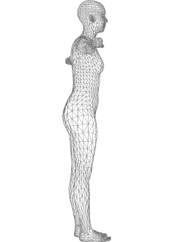 Body Mass Index Visualizer