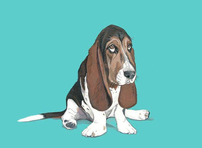 Custom Pet Portraits By Manda Wolfe Dog Milk Animal Portraits Art Custom Dog Portraits Dog Print Art