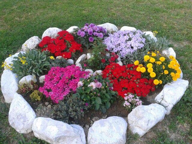 La mia aiuola con sassi della mia amata montagna fiori for Giardini con sassi colorati