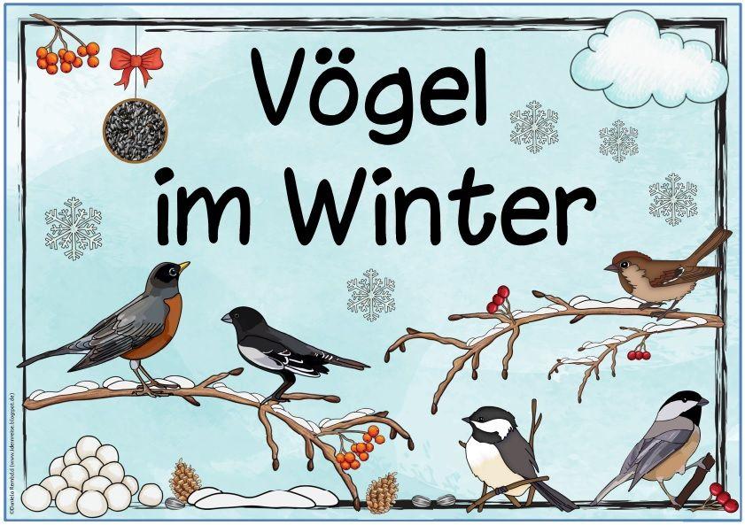 Ideenreise Vogel Im Winter Ideenreise Grundschule
