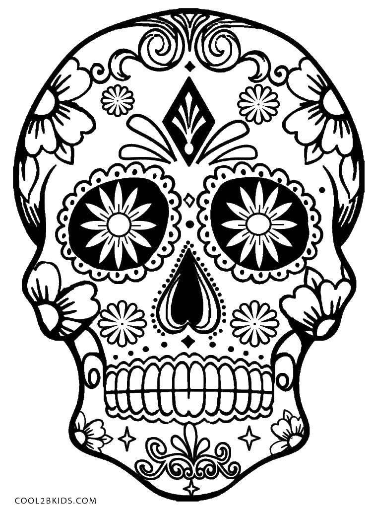 Раскраска Череп с цветами в глазах ,череп, цветы, узоры ...