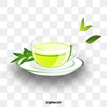 Cup Of Green Tea Png Vector Clipart Picture Gallery Yopriceville High Quality Images And Transparent Png Free Clipart