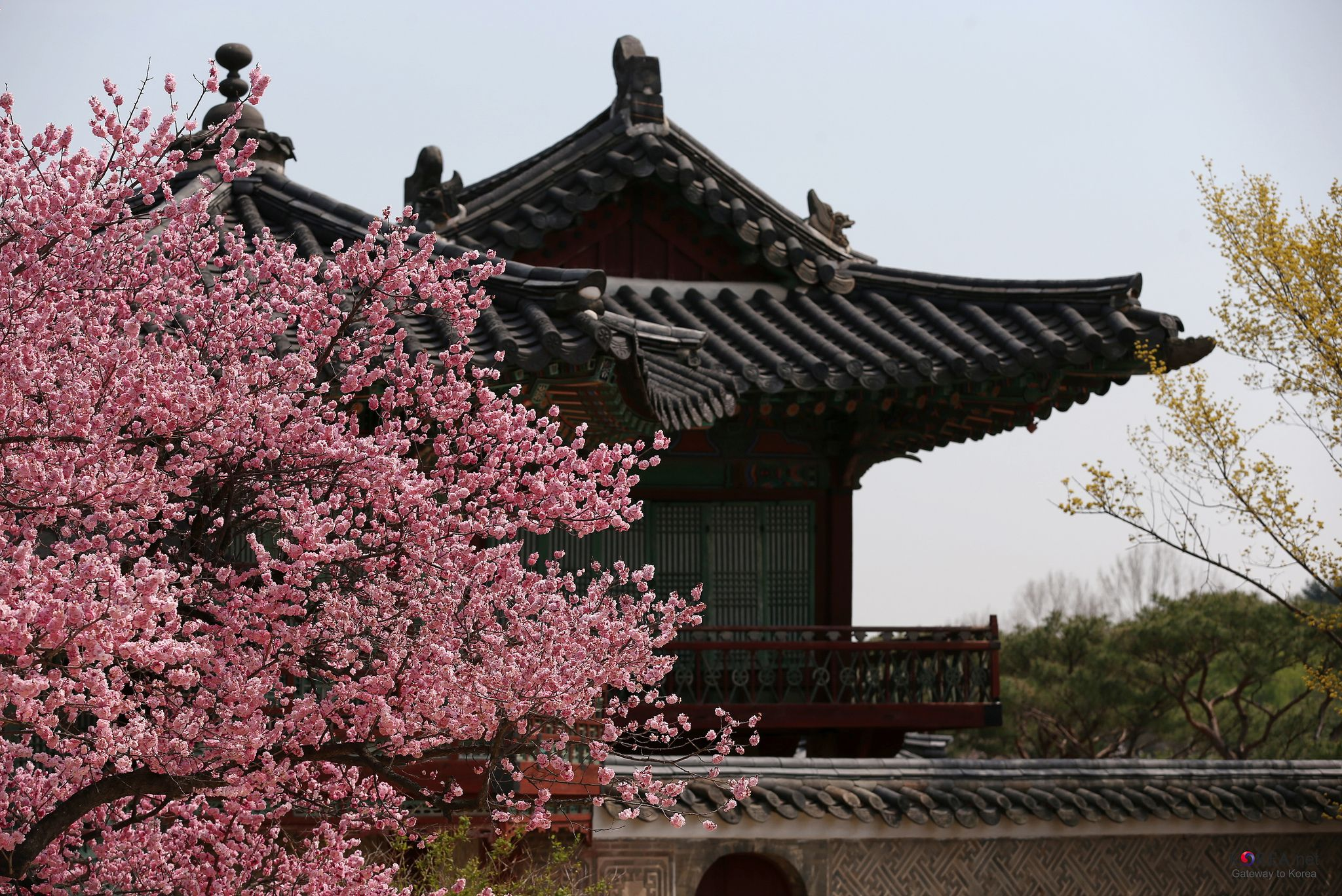 Stunningly Beautiful Places To Visit In South Korea Korea South Korea And Stunningly Beautiful