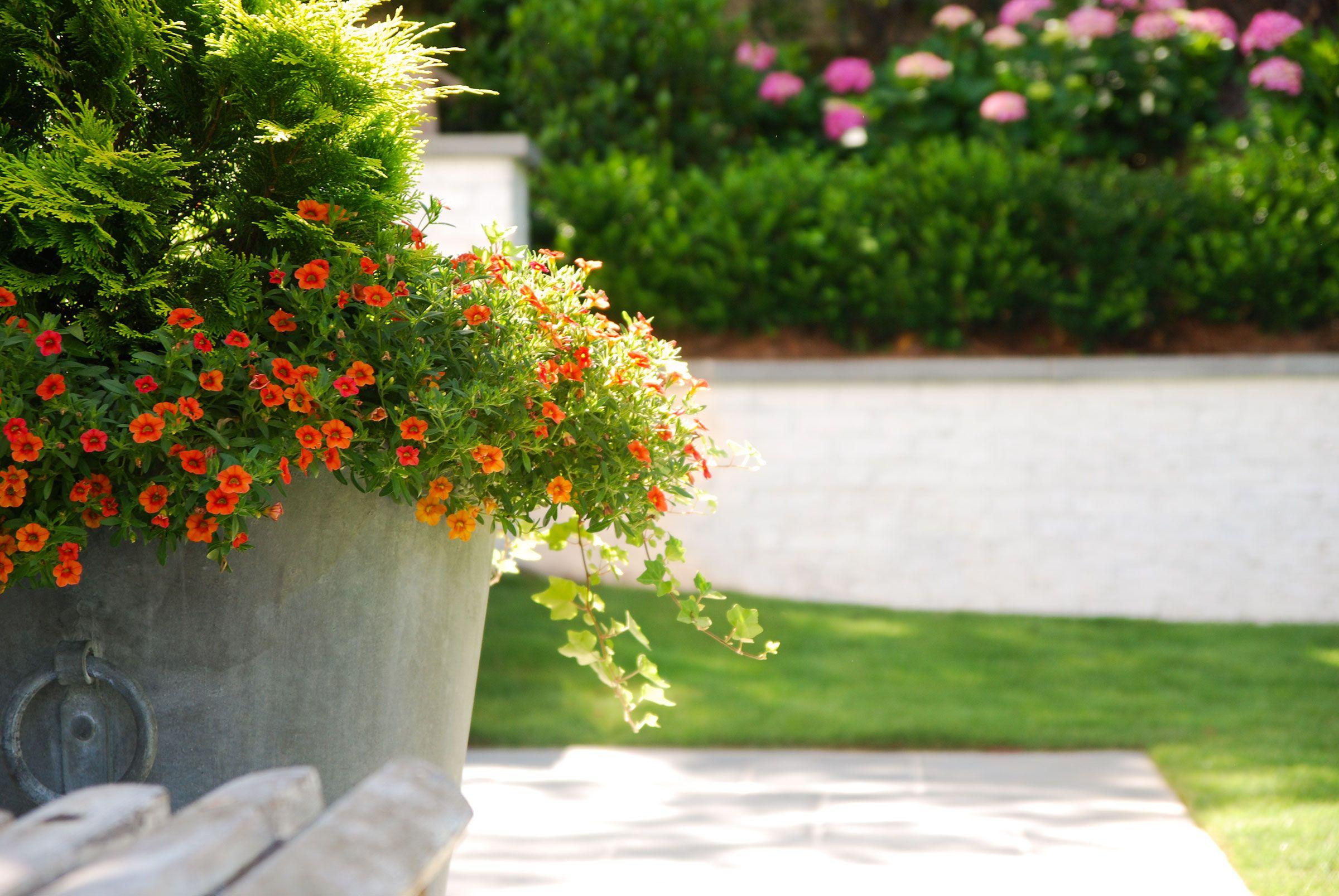 Landscape architect atlanta ga - Bellwether Landscape Architects Atlanta Ga