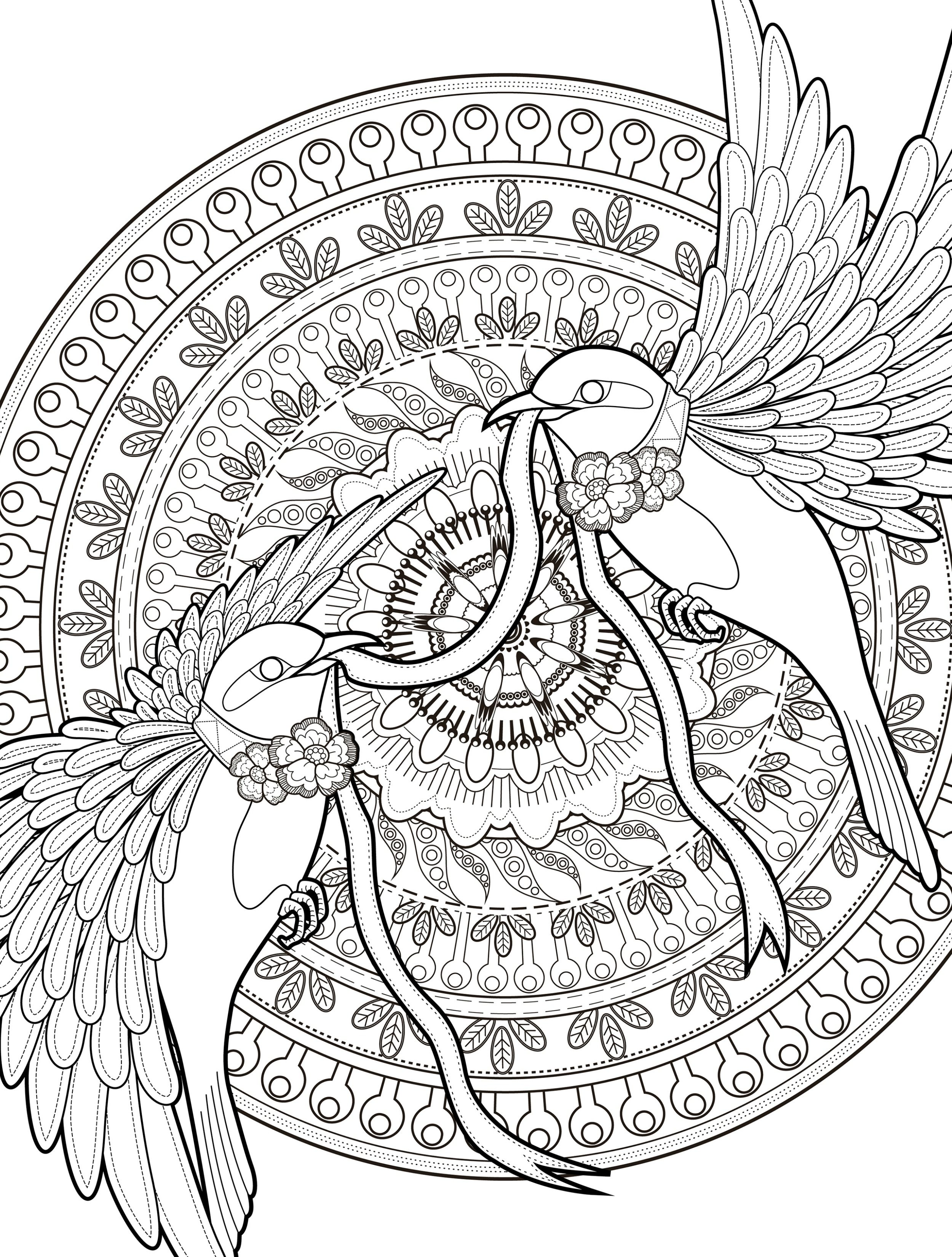 Downloadable butterfly coloring pages - 24 More Free Printable Adult Coloring Pages Page 24 Of 25