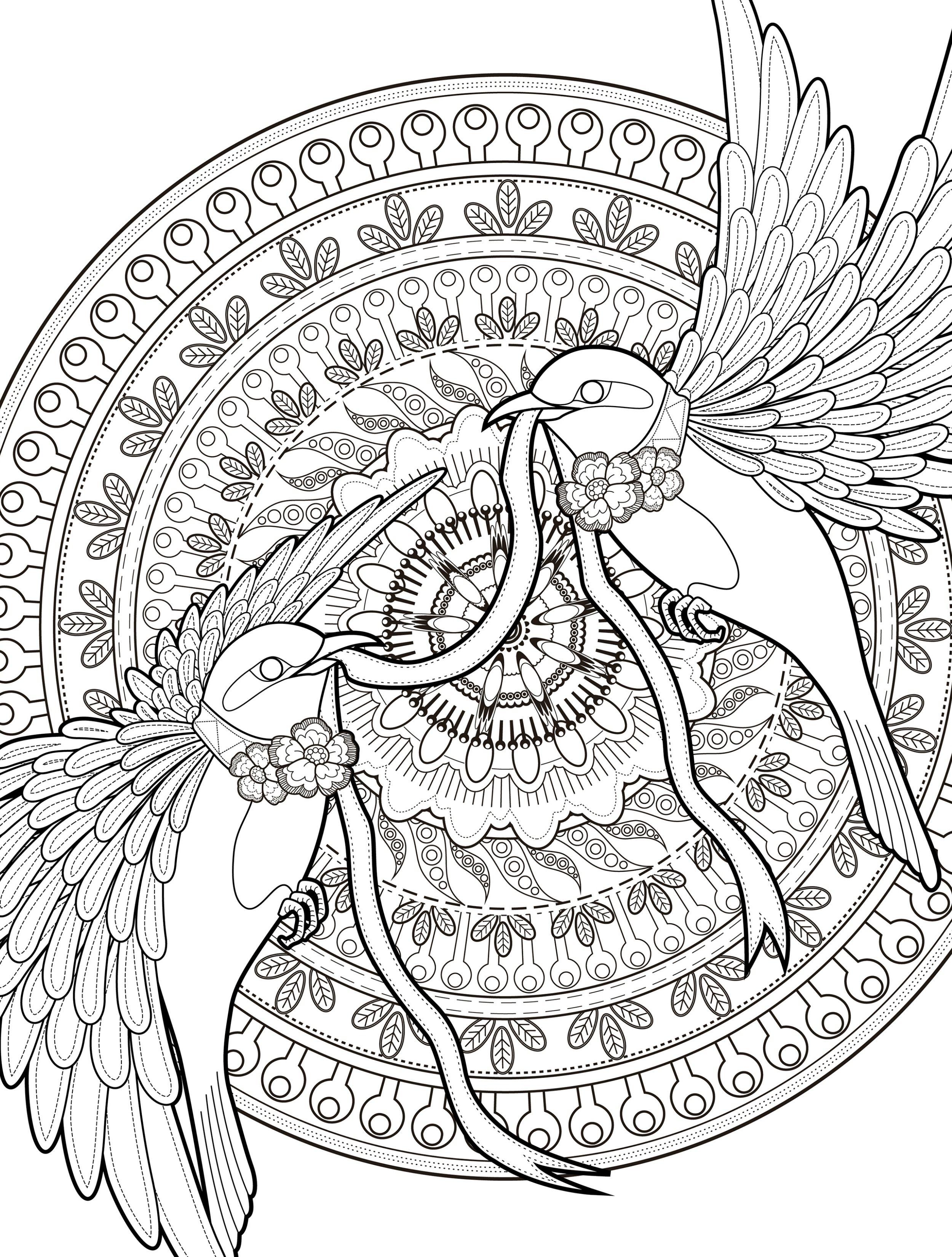 Colibris | Patrones | Pinterest | Mandalas, Colorear y Dibujo