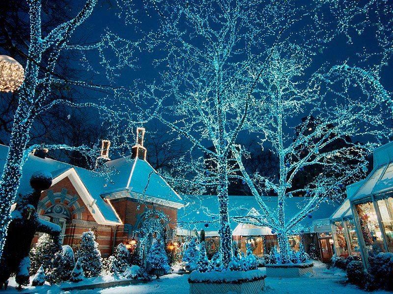 Whoaaaa \u0027Tis The Season! Pinterest Christmas lights and