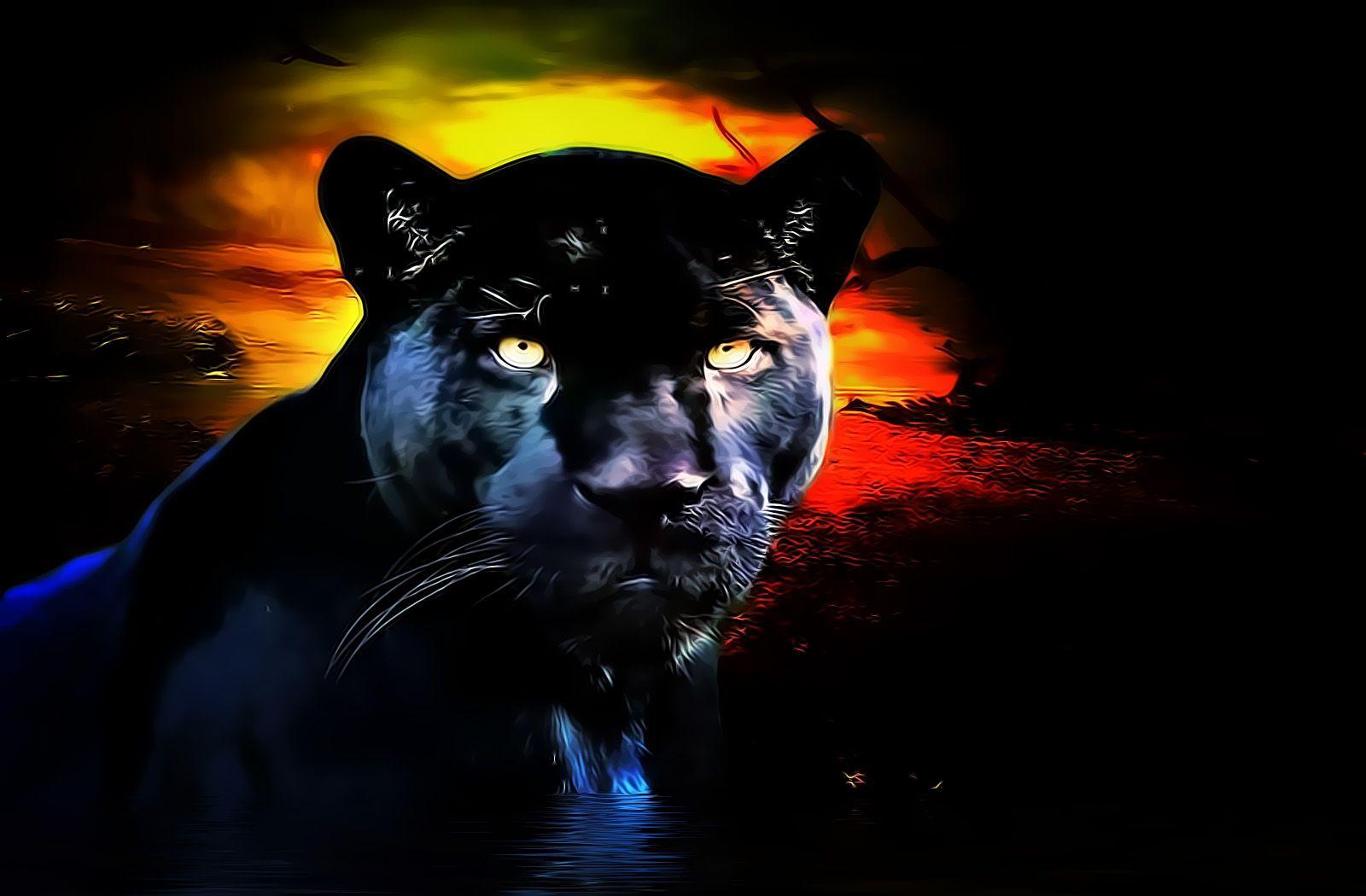 Kool HD Desktop Black Panther Wallpaper Black panther hd
